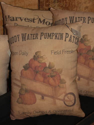 Muddy Water Pumpkin Patch Accent Pillow
